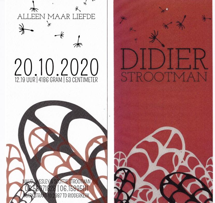 Geboortebericht Didier Strootman
